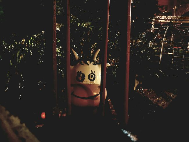 The Great Outdoors With Adobe Indonesia_photography July 2016 Point Of View Scary Cow Playground At Night Looking At Camera Samsungphotography Night Photography Close Up Photography Samsung Galaxy S7 Puncak Bogor Cow Scary Moment Smiley Face Stare At You