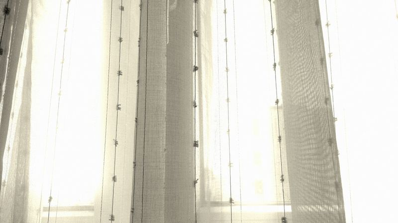 light Light Throuh Curtains Light Through The Window Light Through Glass Home Interior Day No People Room