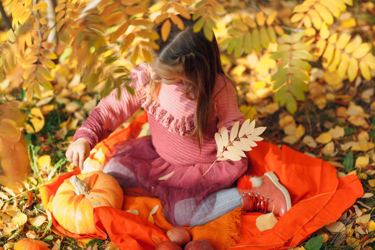 Rear view of girl sitting on leaves during autumn