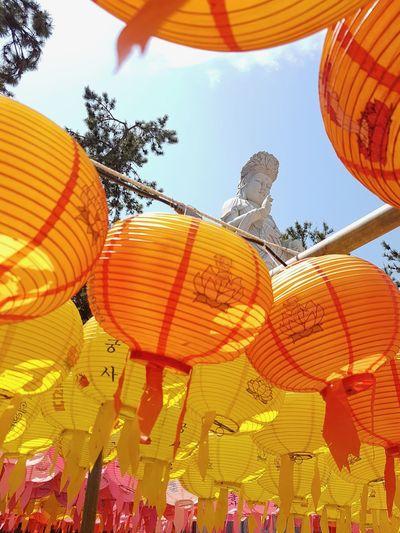 Busan,Korea Cultures Tradition Lantern Outdoors Celebration Buddha Temple Colors Religion Pray Statue East Travel 佛 燈籠
