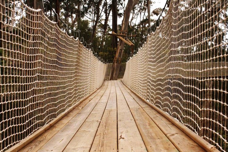 Parallel Wood The Way Forward Bridge No People Architecture Day Connection Rope Bridge Built Structure Footbridge Hanging Outdoors Direction