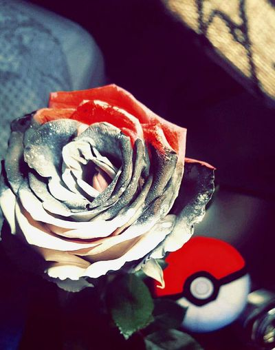 I tried. Wanted the colors to pop off the screen and I guess I did it :) Pokemonfan Pokeball Painted Flower