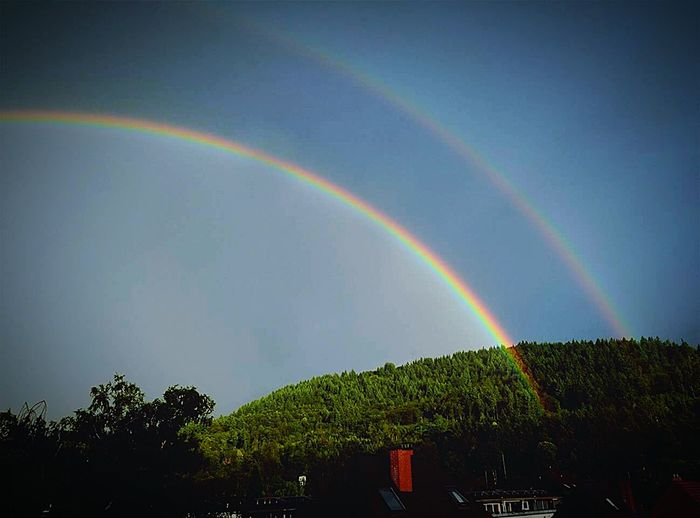 Check This Out Relaxing Rainbows Real