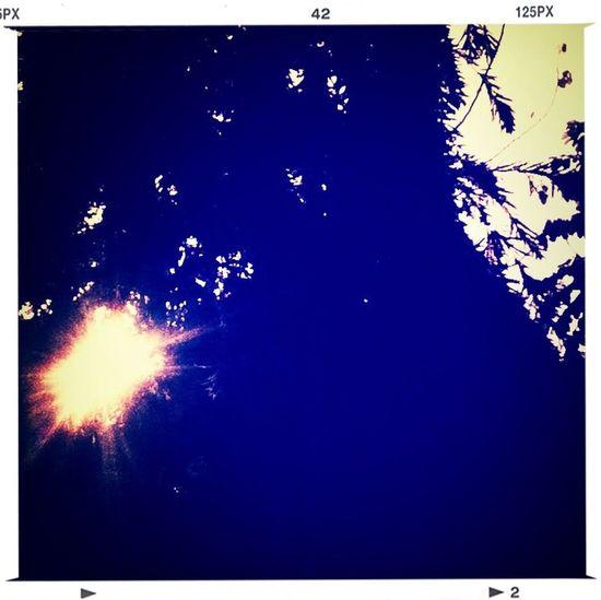 tán cây nhỏ... lặng nghe tiếng sóng vỗ.. Peace