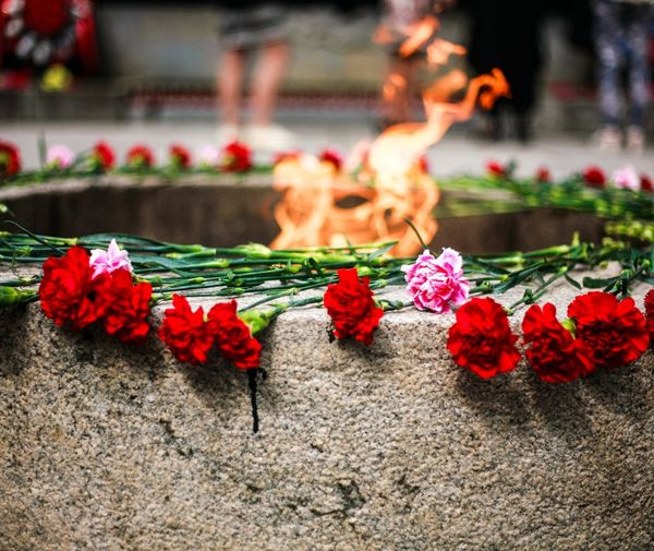 Eternal flame Fire Memory Flowers Flame War Memory War Medals War Memorial Park