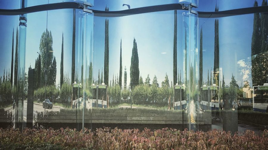 Plant Outdoors Building Glass - Material Building Exterior Interesting Perspectives Photography Modern Urbanphotography Outside Photography Cityphotography Built Structure StreetLife_Award Taking Photos Architecture Outdoors Photograpghy