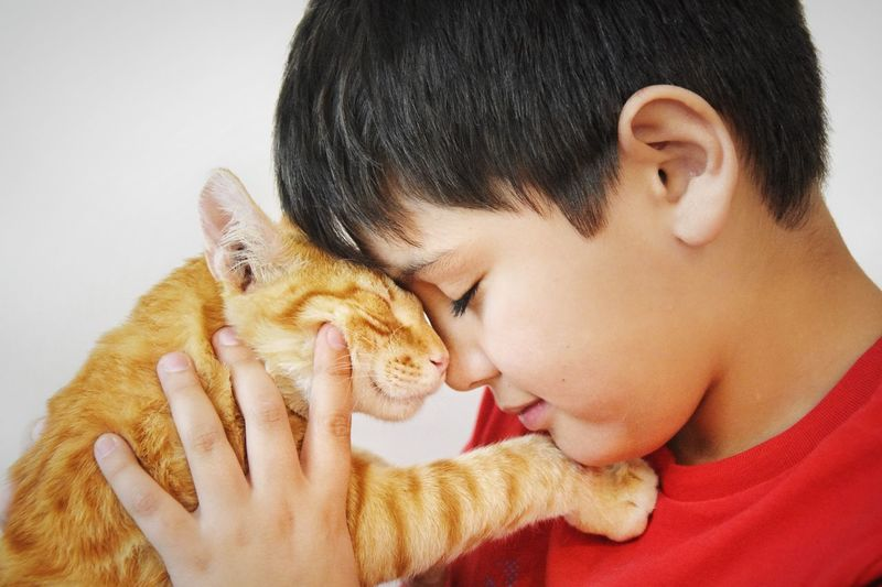 Enfance Mascota Affection Kids And Pets Kids And Cats Orange Cat Cat Pet EyeEm Selects Headshot One Person Indoors  Portrait Child Close-up Eyes Closed  Childhood Males  Human Face