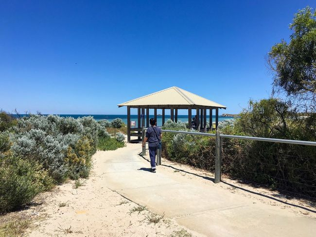 Footpath leading to Mersey Point where the Adventure Boat Cruise awaits — Shoalwater Islands Marine Park, Rockingham, Western Australia. Mersey Point Horizon Over Water Outdoors Leisure Activity Day Real People One Person Clear Sky Growth Shrubs Built Structure Pavilion Footpath Walking Young Adult Sky Blue Scenics Sand Sea Sunny October 2016 Early Summer Late Spring Lovely Weather Western Australia Rockingham Shoalwater Islands Marine Park Vacation Travel Destinations