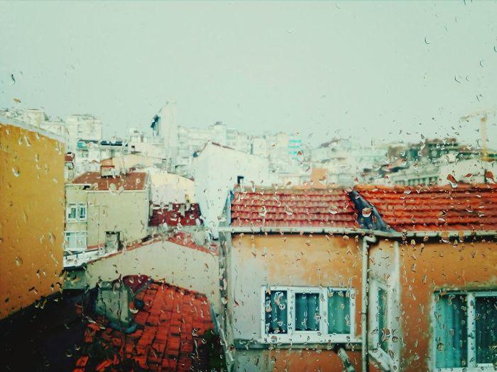 rainy Istanbul Architecture Window Roofs Drops💧 Rainy Days Sky