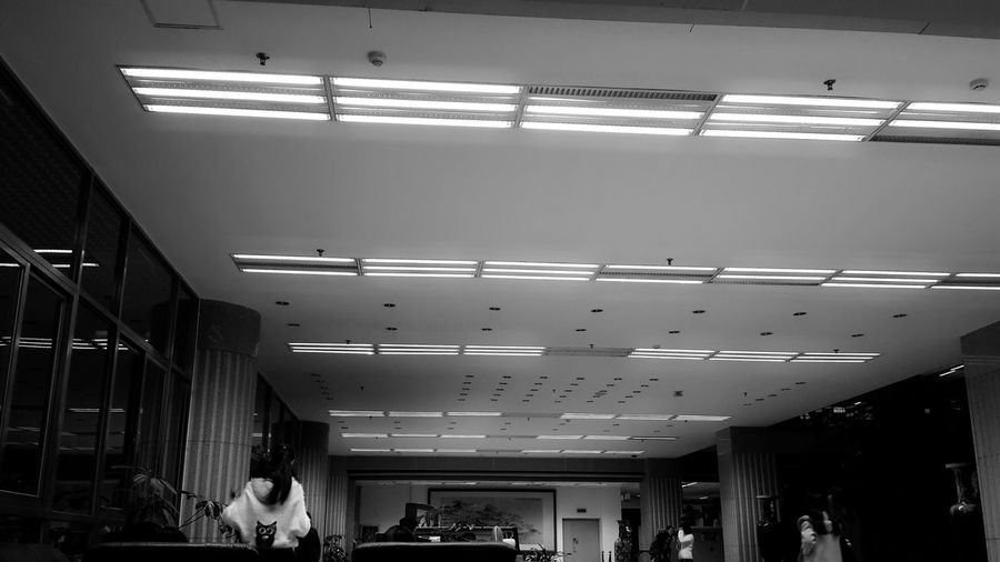first floor of library Lights Ceiling