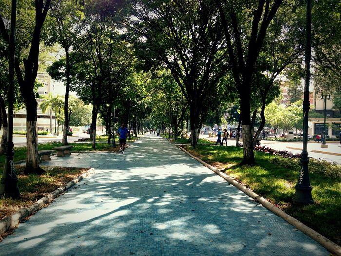 Av. Nueva Granada Caracas