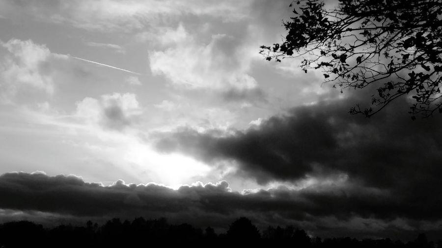 Cloud - Sky Nature Landscape Sky Tree No People Day Eyeem Market EyeEm EyeEm Best Shots - Nature Wegesrand Storm Cloud Wolkenhimmel Wolken Wolkenstimmung Clouds And Sky Cloudy Cloud Sonnenstrahlen