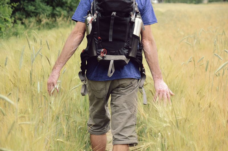 man walking on field Natural Man Outdoors Season  Lifestyles Summer Peoples person Field Walking Body Part Backpack Standing Field Walking Summer Grass Close-up Ear Of Wheat Wheat Crop  Farmland Farm Cereal Plant Human Back Barley Oat - Crop