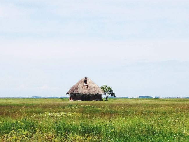 Agriculture Field Grass Outdoors Architecture No People Nature Rural Scene Tranquility Sky Landscape Day Cloud - Sky Built Structure Beauty In Nature Hortobagy National Park Puszta