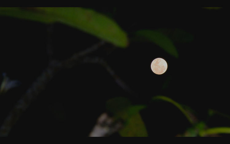 Full Moon #Bali #Indonesia #Natural #Nature  #beautiful #fullmoon #moon #outdoor #sky #skylovers