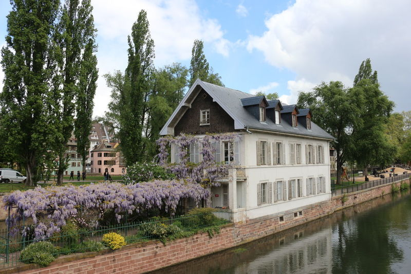 House Strasbourg Flower Outdoors France Colorful Colorful Backyard River House River City Cloud - Sky