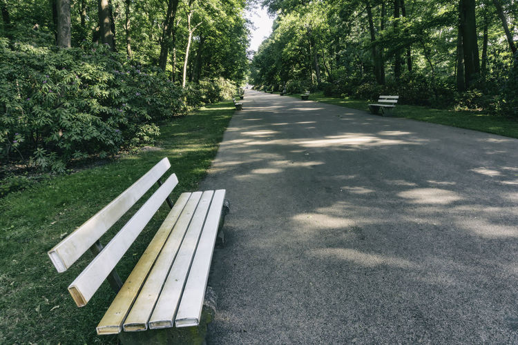 Bench at Park Berlin Germany 🇩🇪 Deutschland Color Image Horizontal Outdoors No People Plant Tree Nature Shadow Absence Sunlight Day Park Growth Bench Empty Road The Way Forward Transportation Beauty In Nature Seat Park - Man Made Space Park Bench Direction