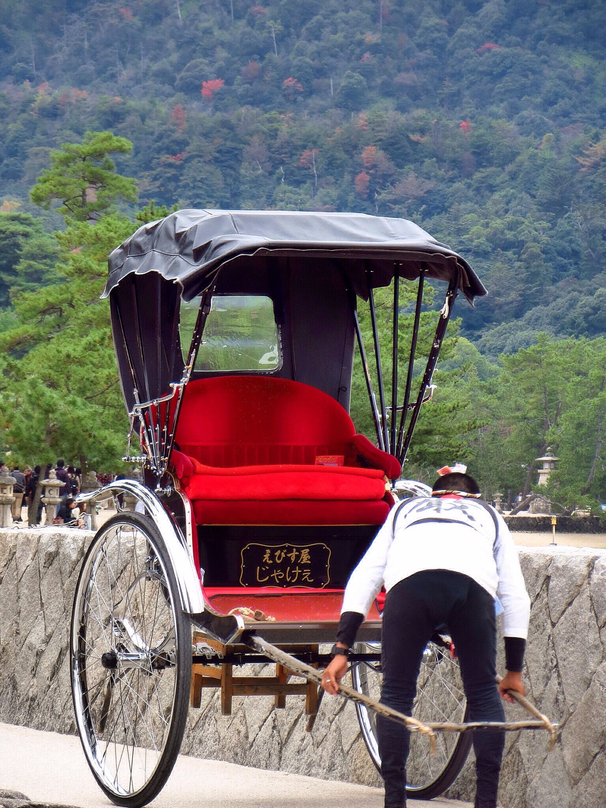 transportation, mode of transport, land vehicle, bicycle, stationary, travel, car, parked, mountain, parking, road, riding, outdoors, street, day, tree, red, side view