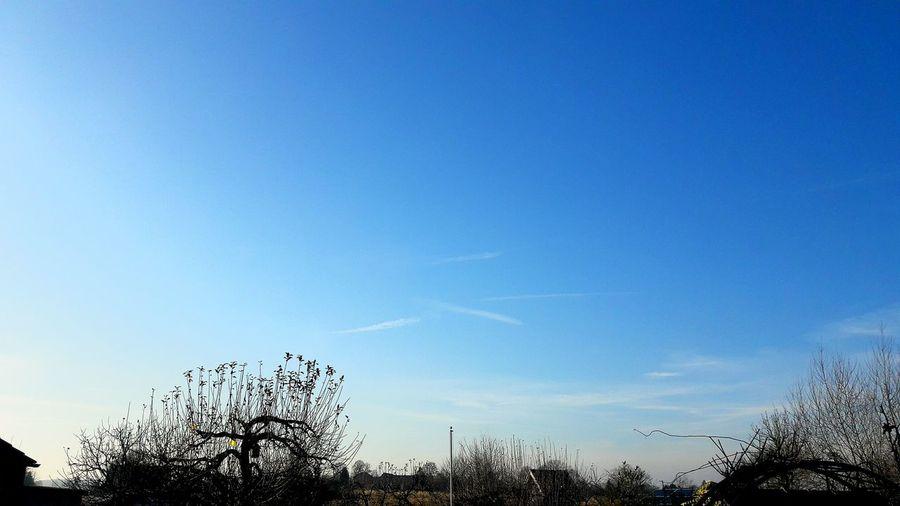 Germany🇩🇪 Wimter2016 Winter❄ No People Beauty In Nature Blau Blue Himmel Mega Fresh Nice Cool WOW Schönes Wetter Schöne Aussicht 😍
