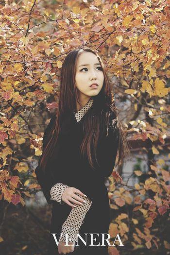 Autumn Autumn Leaves Mongolian Girl Nature