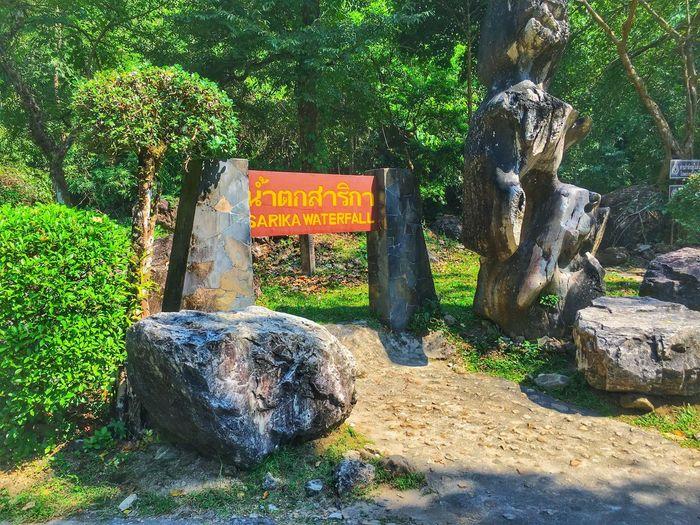 Entrance to Sarika waterfall Nakornnayok Thailand Waterfall Sarika Entrance Garden Entrance Growth Sunlight Nature Beauty In Nature