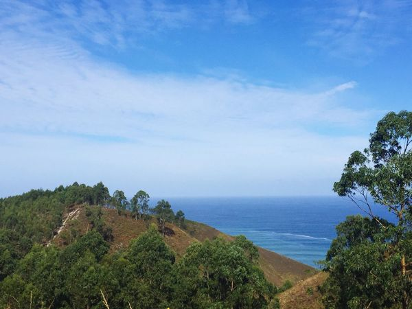 Sea Horizon Over Water Water Blue Nature Tranquility Sky Tree Calm Mountain Beauty In Nature Iphone6