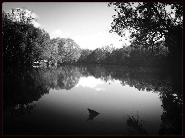 Lake Getaway  Camping