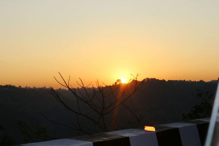 Sunset Tree No People Nature Winter Outdoors Sunrays Sunlight ☀