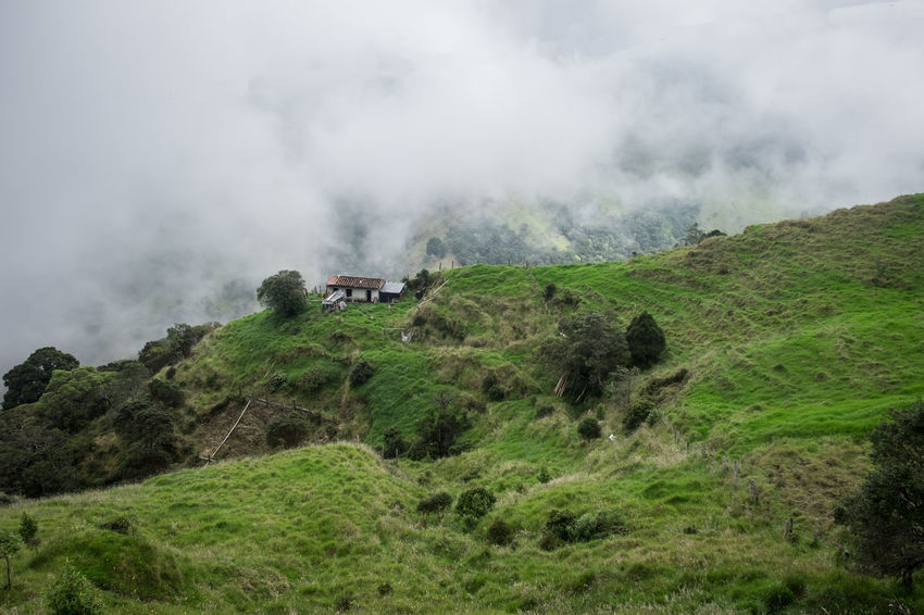 On the road near Salento, Colombia. High altitude and quite some fog Colombia Colombia ♥  Foggy Green Color House Landscape Lone House Mountain Nature On The Road Scenics