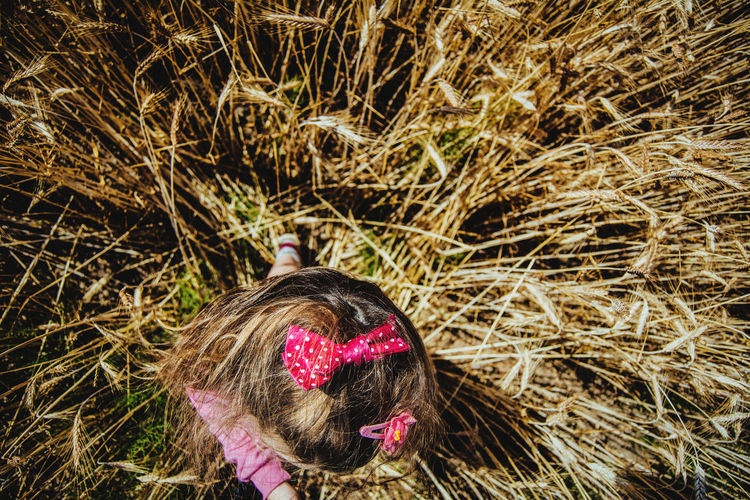 Directly above shot of girl on dry field