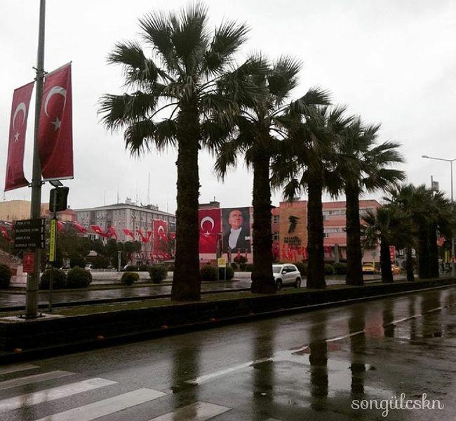 Palm Tree No People City Outdoors Reflection Travel Destinations çanakkaledenizzaferimiz100yaşında Canakkale Turkey