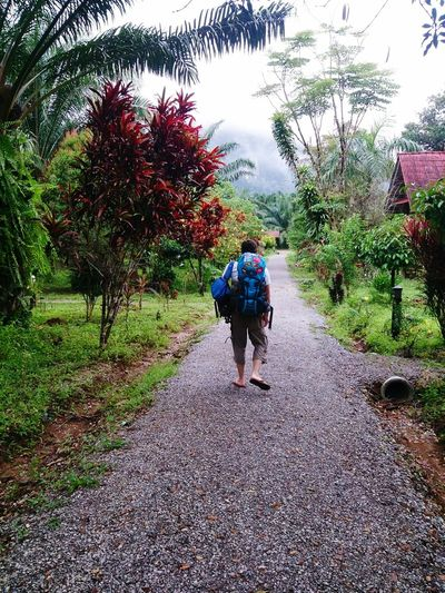Keep walking Walking Real People Lifestyles Travel Rear View Backpakers Miles Away Backpack