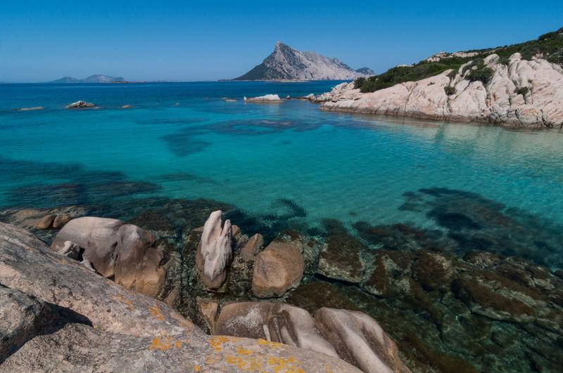 Sardegna mare limpido della spiaggia delel vacche Water Rock Scenics - Nature Beauty In Nature Tranquil Scene Rock - Object Tranquility Sea Mountain Nature Day No People Land Sardegna Le Vacche