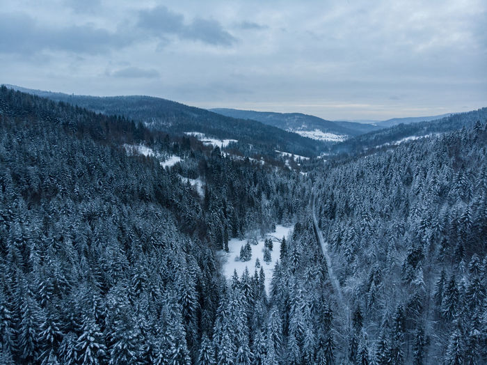 Poland Poland 💗 Poland Nature Beskidy Beskid Frozen Frozen Nature Winter Wintertime Winter Wonderland Winter Trees Landscape Landscape_Collection Cold Temperature Snow Nature Beauty In Nature No People Tree Scenics - Nature Tranquility Snowcapped Mountain Mountain Tranquil Scene Pine Tree
