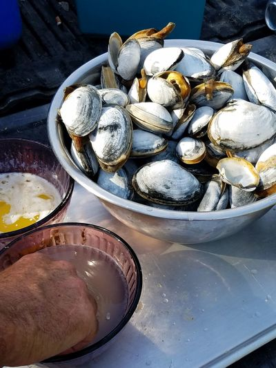 Cape Cod SHELLFISH  Steamed Clams Bowl Table Close-up Food And Drink Seafood