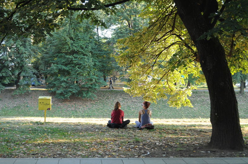 Moments Beauty In Nature Best Friends Casual Day Fall Friends Friendship Grass Green Color Leisure Activity Lifestyles Moments Nature Outdoors Promenade Relaxation Sarajevo September Sitting Stolenshot Streetphotography Sunny Day Tranquility Tree Wilson's Promenade
