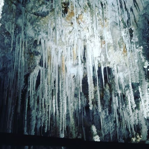 Tropfsteinhöhle Caves Cave Tropfsteinhöhle Stalactite  No People Ice Full Frame Cold Temperature Tree Pattern Backgrounds Frozen Indoors  Nature Textured  Winter Day Close-up Auto Post Production Filter Icicle Low Angle View Forest Snow