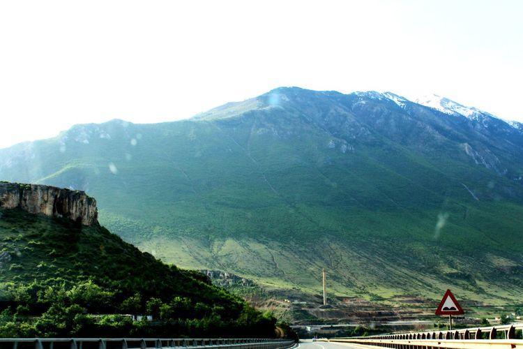 Tree Mountain Sky Landscape Mountain Range