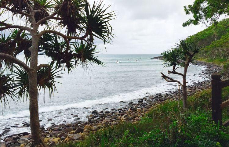 Ocean Views Noosaheads QLD Noosanationalpark Beachphotography Good Morning!