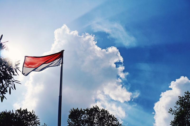 INDONESIA KU MERAH PUTIH INDONESIA Summer INDONESIA Indonesian Flag Sky Cloud - Sky Low Angle View Flag Patriotism Nature Tree No People Environment Wind Outdoors Day Plant Tranquility Blue Pole Waving Symbol Symbolism National Icon