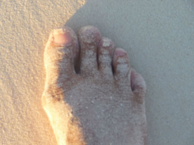 Perfect summer day Background Backgrounds Barefoot Beach Close-up Human Body Part Human Leg Mission Natural Perfect Match Part Of Perfect Match Real People Sand Sand Beach Sandy Feet Sandy Foot Textures Textures And Surfaces The Perfect Match  Woman Women The Essence Of Summer Foot Feetselfie