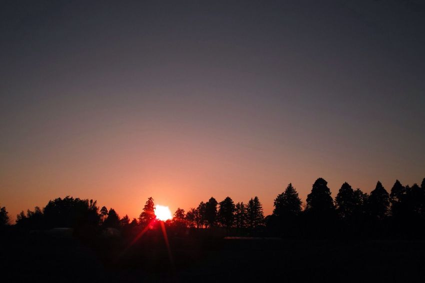 おつかれさま Sunset SigmaDP1X Twilight 夕暮れ時 おつかれさま