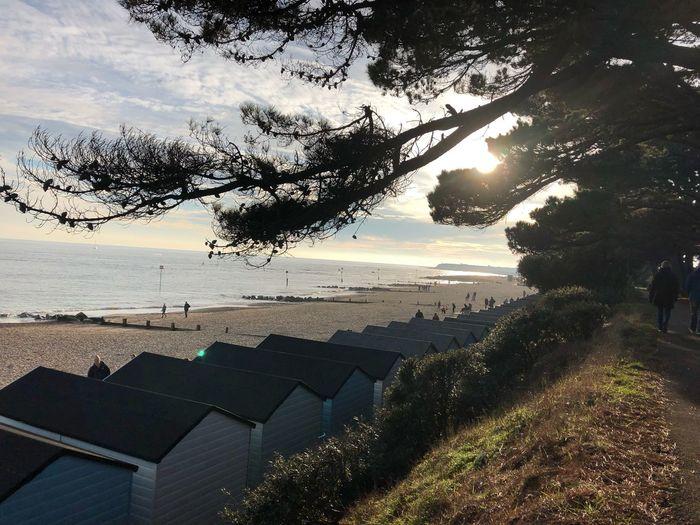 Beach huts in the winter sunshine Water Tree Plant Nature Architecture Sky Sea Beauty In Nature Built Structure Beach No People Day Building Exterior Sunlight Tranquility High Angle View Scenics - Nature Outdoors