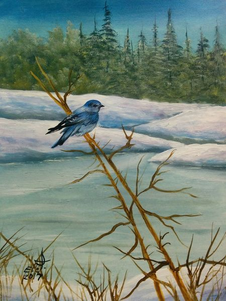 """Western Tanager, native Rocky mountain birds,oil on canvas 18""""_24"""", Animals In The Wild My Birds Collection Nature Drawing ArtWork Original Art Art, Drawing, Creativity Fine Art Oil Painting With3XSPUnity Fredom My Art Collection Tranquil Scene Friendship. ♡   My Best Friends ❤ Landscape Snow ❄ Love♥ Koi. With"""