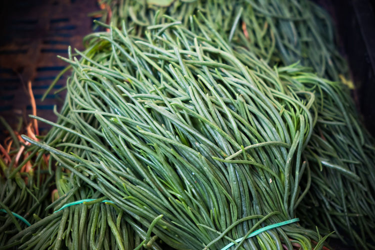 Vegetable agretti bunch raw food in market stall Green Color Food And Drink Food Freshness Wellbeing Healthy Eating Close-up Market No People Still Life Retail  Vegetable Plant Part For Sale Leaf Abundance Herb High Angle View Raw Food Agretti Market Stall Vegetarian Food