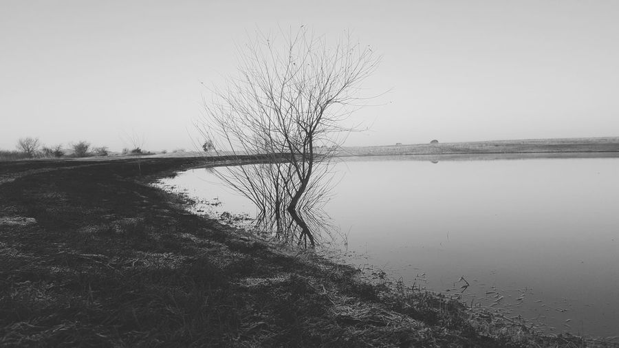 Nature Water Reflection Sky No People Outdoors Lake Tree Reflection Landscape Tree Nature Oklahoma Dead Tree Branch Miles Away Cellphone Photography Oklahoma Nature Oklahomaphotography Clear Sky Waterfront Blackandwhite