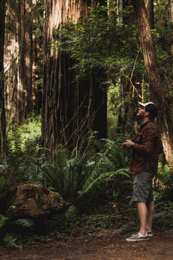 Full length of young man standing by tree in forest operating drone remote control looking up
