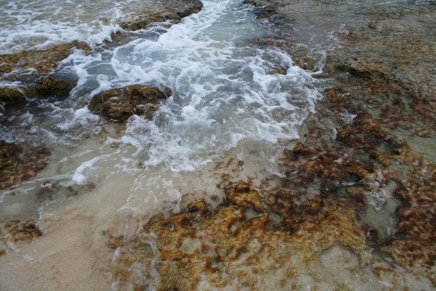 2007 Dominican Republic Dominicus Beach Wave Beauty In Nature Day Motion Nature No People Outdoors Sea Water