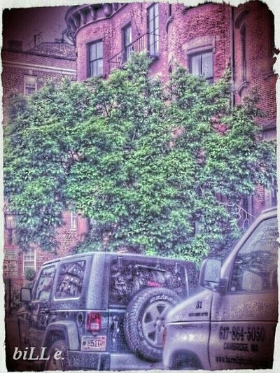 Brownstone Drive By...