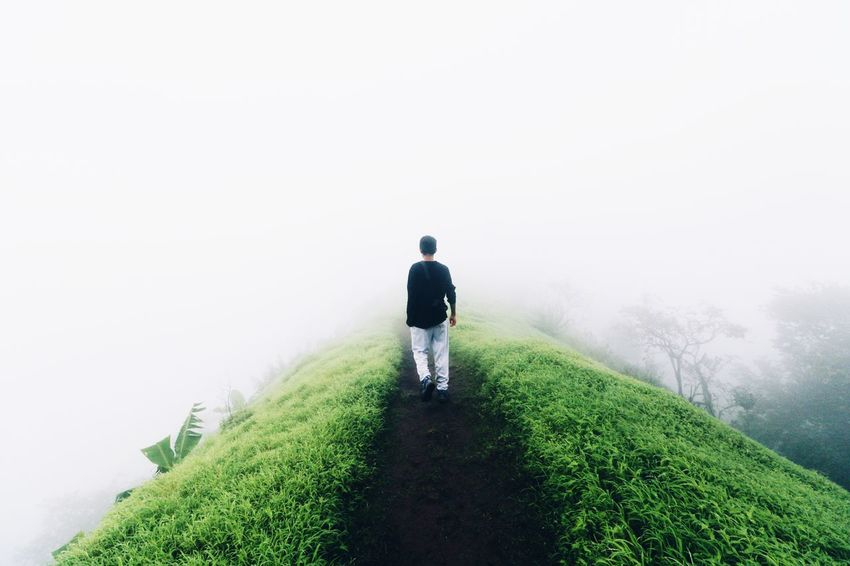 Into the fog Into The Fog Mist Lonely Wanderer On Top Of A Mountain On Top Of The World Lonelyplanetindia Lonelyplanet EyeEm Best Shots EyeEm Nature Lover EyeEm Best Shots - Nature EyeEm One Person One Man Only Nature Nature On Your Doorstep Fresh On Eyeem  The Great Outdoors With Adobe The Great Outdoors - 2016 EyeEm Awards My Favorite Photo People And Places